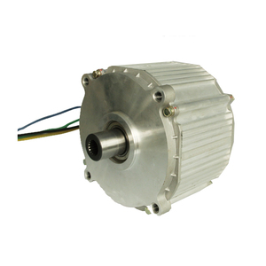 Miniature-electric-motor